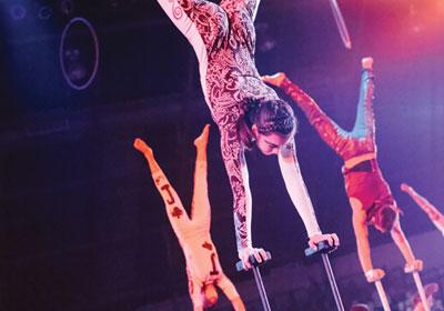 Top Tickets: Circus Juventas