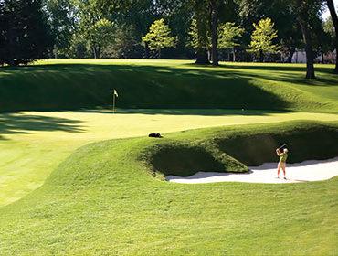 Golf's New Tigers