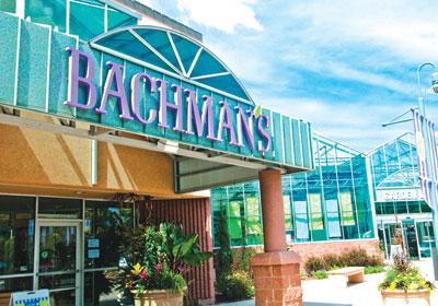 A Growth Story: Bachman's vs. Tangletown Gardens