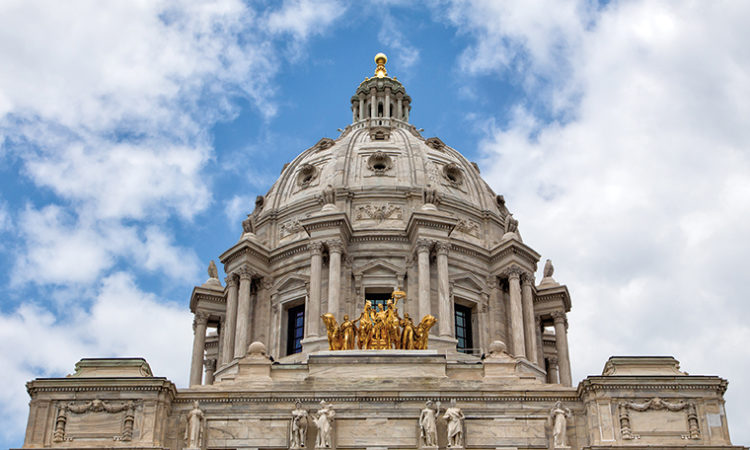 Mixing Politics and Business: A Breakdown of the Minnesota House by Profession