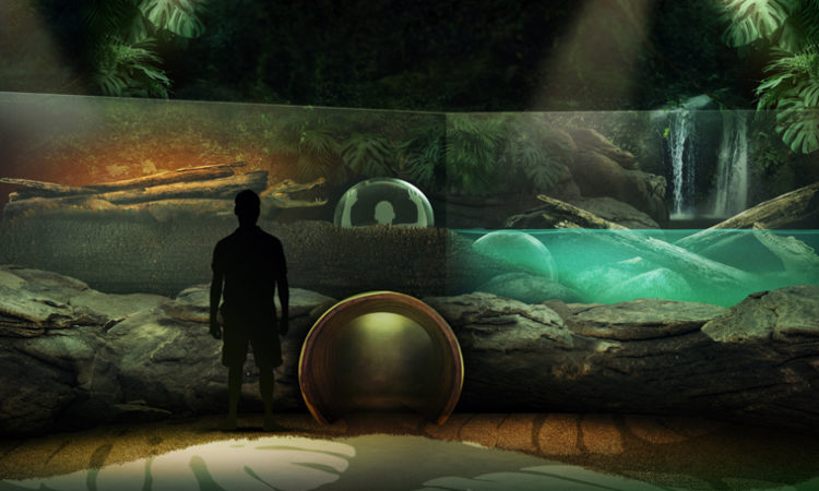 """Mall of America's Sea Life Aquarium Introducing """"Brave the Rainforest"""" Adventure in 2019"""