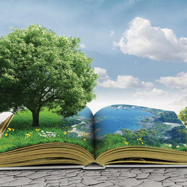 Stories Plant Seeds of Success