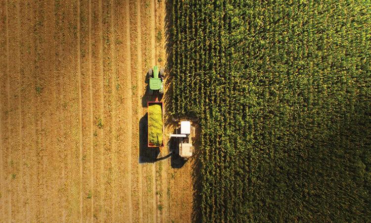Farming for a Future