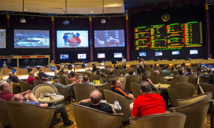 Could Legalized Sports Betting Come to Minnesota As Soon As 2019?