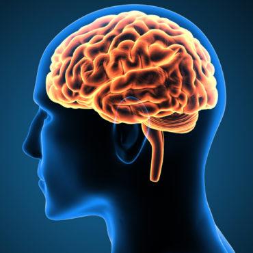 Mayo, Partners Seek Patent on 'Breakthrough' Brain Cancer Drug Treatment