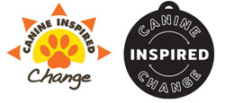 Dog Therapy Nonprofit Gets Rebranded During All-Night Challenge