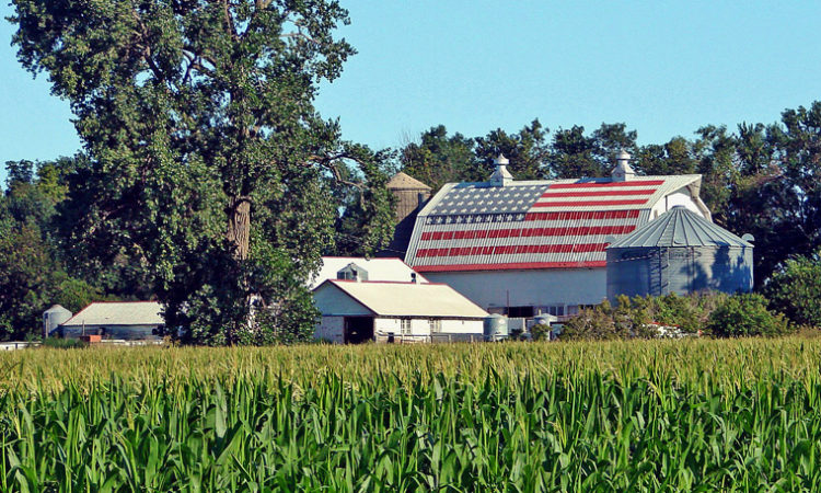 USDA Declares Agricultural Disaster in Seven Minnesota Counties