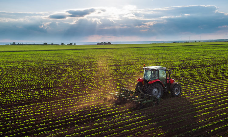 General Mills Releases Plan for Pesticide Use Reduction at Advocates' Request