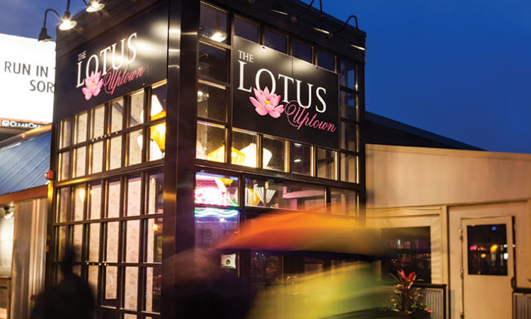 Can the Lotus Blossom in Uptown?