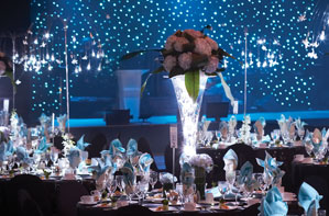 Abbott Northwestern Hospital Foundation Gala: Dance With The Stars