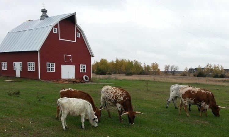 Princeton Farmer and Entrepreneur Sows New Revenue Streams