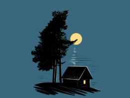 Illustration of cabin at night