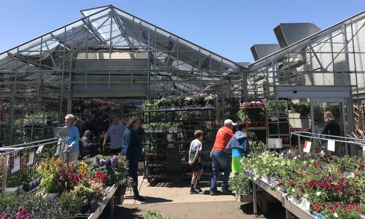 Bachman's to Reopen Amid Industry Confusion About Plant Sellers