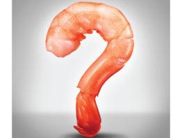 a shrimp made into a question mark
