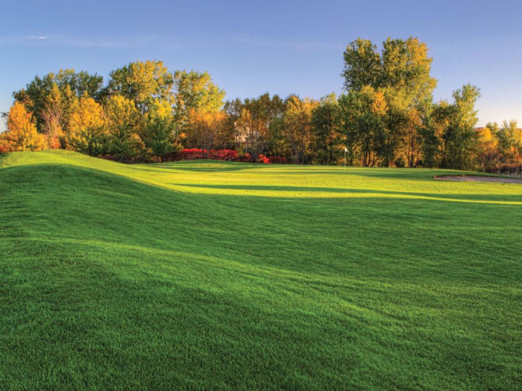 Oakdale's Oak Marsh Golf Course
